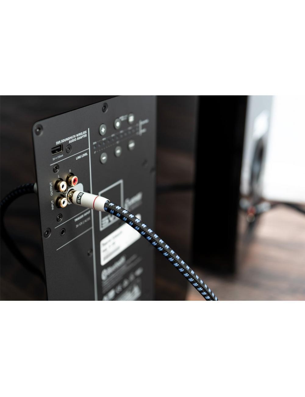 cavo di segnale per subwoofer con terminazioni RCA HiFI, SVS SoundPath RCA Subwoofer, dettaglio connessione subwoofer