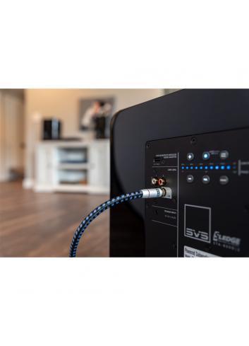 cavo di segnale per subwoofer con terminazioni RCA HiFI, SVS SoundPath RCA Subwoofer, dettaglio connessione lato subwoofer
