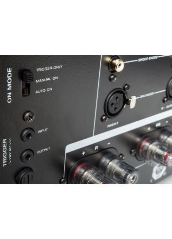 amplificatore di potenza a tre canali, Anthem MCA 325, vista morsetti connessione