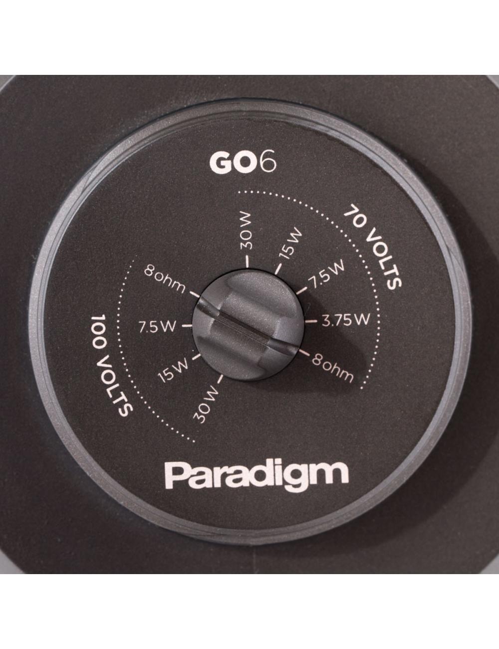 diffusore acustico HiFi da esterno resistente all'acqua,  Paradigm GO6, selettore